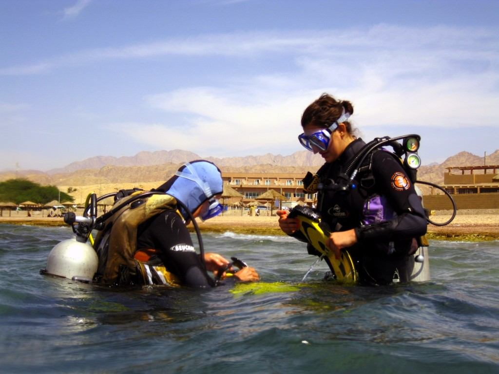 diving from the shore in Aqaba Jordan