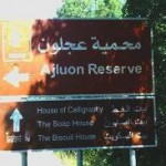 ajloun sign