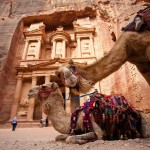 Petra Day Tours treasury camel jordan