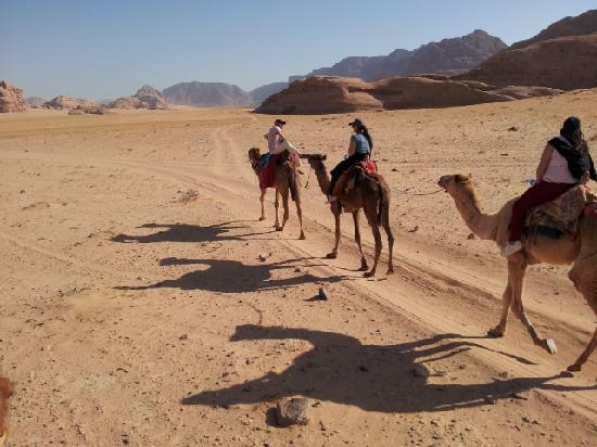 camel ride, wadi rum, jordan, adventure