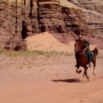 galloping in wadi rum