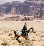 horse riding in wadi rum jordan desert