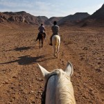 riding a horse wadi rum