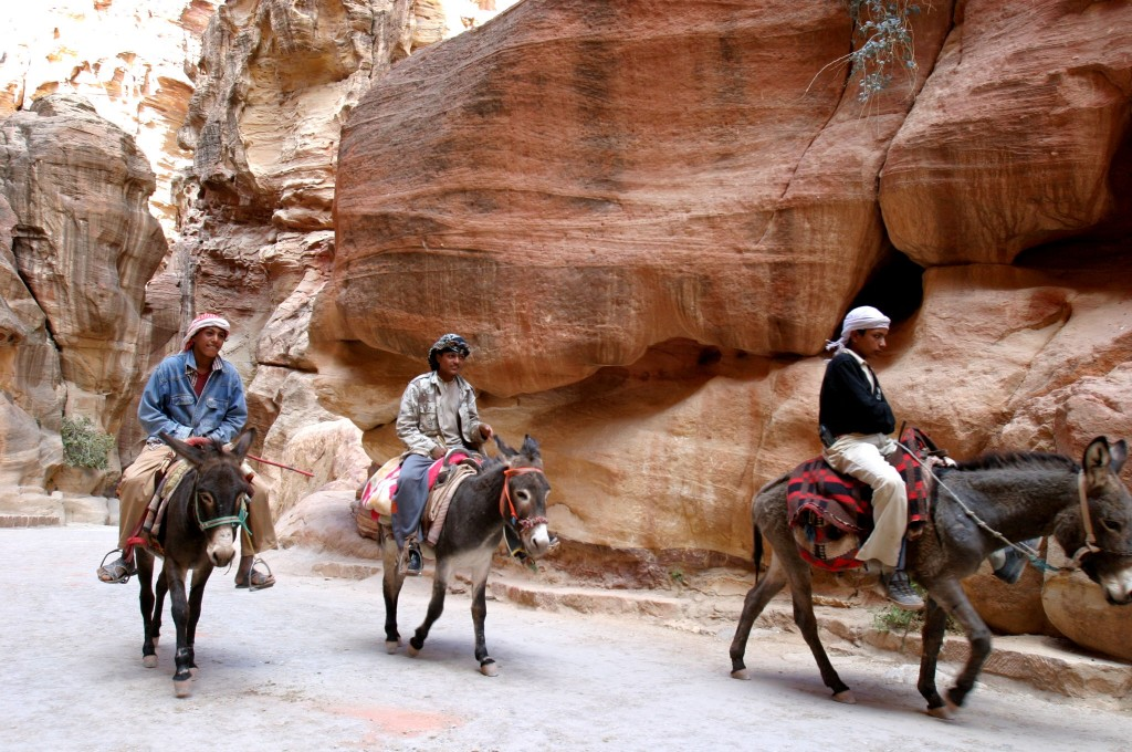 Bedouin and donkeys in Petra, Jordan