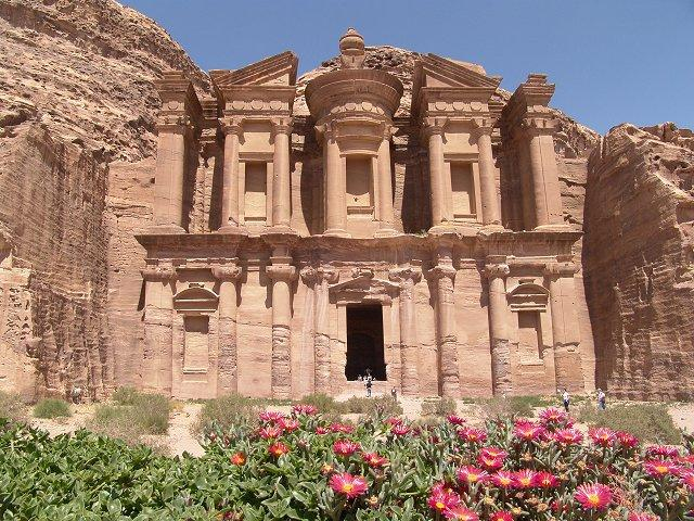 wild flowers at Al Deir, Petra Jordan