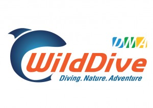 wild dive, Israel Travel Agent